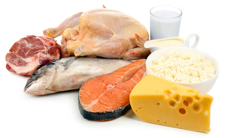 protein sources